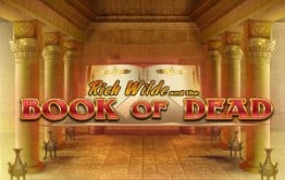 Book of Dead Play'N Go Logo