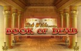 Neue Online Casinos Book of Dead Logo