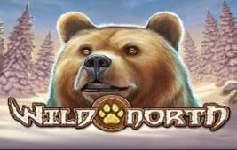 neue play and go online casinos wild north logo